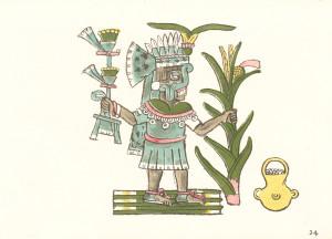 Le dieu Tlaloc, Codice Maglibecchia